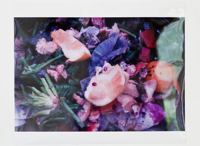 Ryan Foerster,  Compost - Fruit Bomb Glossy , 2011, c-print 16.5 x 24 in