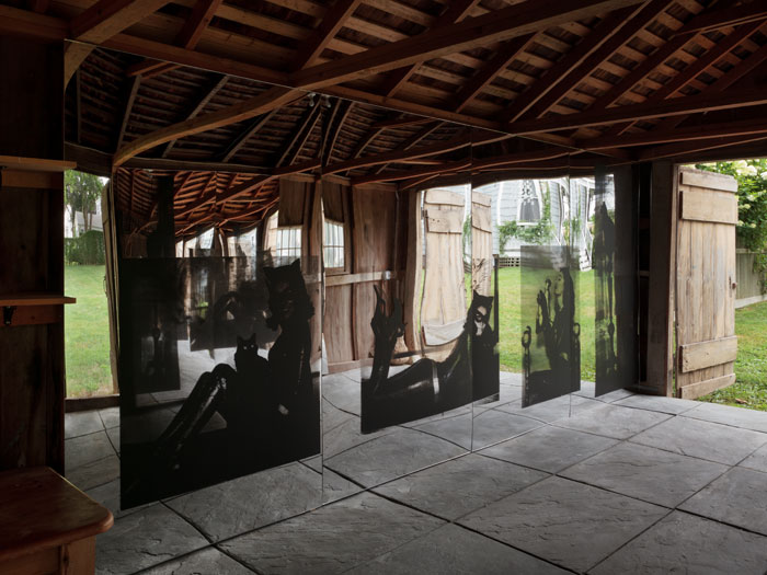 Servane Mary,  Untitled (Black Maria) (detail) , 2012, silkscreen on mirrored plexiglas, site-specific installation with 3 groups of panels, dimensions variable