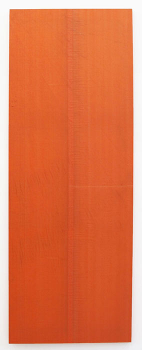 Aaron Bobrow,  The Chasity of Luis Barragan , 2011, tarp, 90 x 33 in