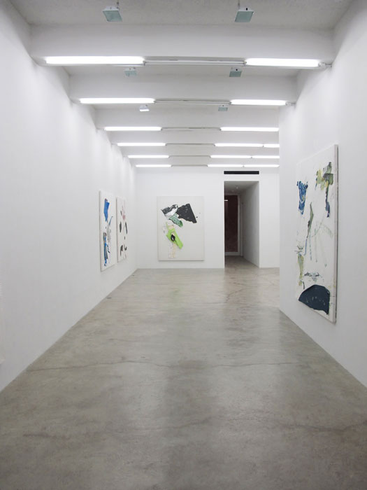 Installation view,  Chameleon Jeans , Martos Gallery, New York, 2011