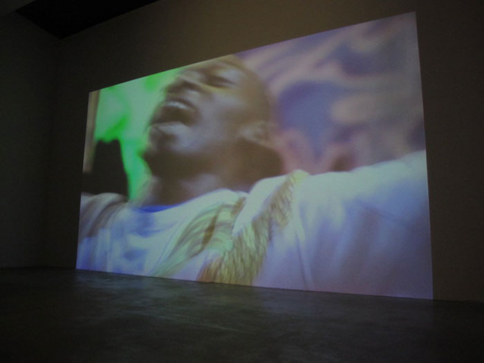 Jules Marquis and P Smith,  Half Locust , 2009, digital video, 2:59 min