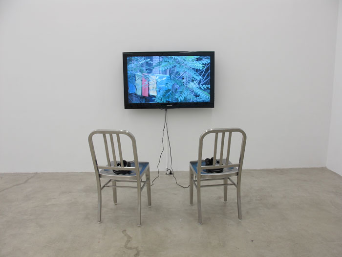 Kyle Thurman,  Untitled (Freedom),  2010, digital video, 3:54 min, Edition of 3 + 1 AP