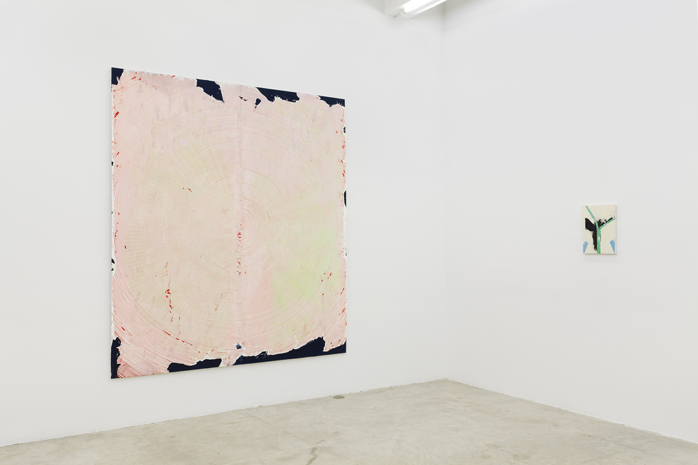 Installation view,  Thick Pink, Stuffed Light,  Martos Gallery, New York, 2014