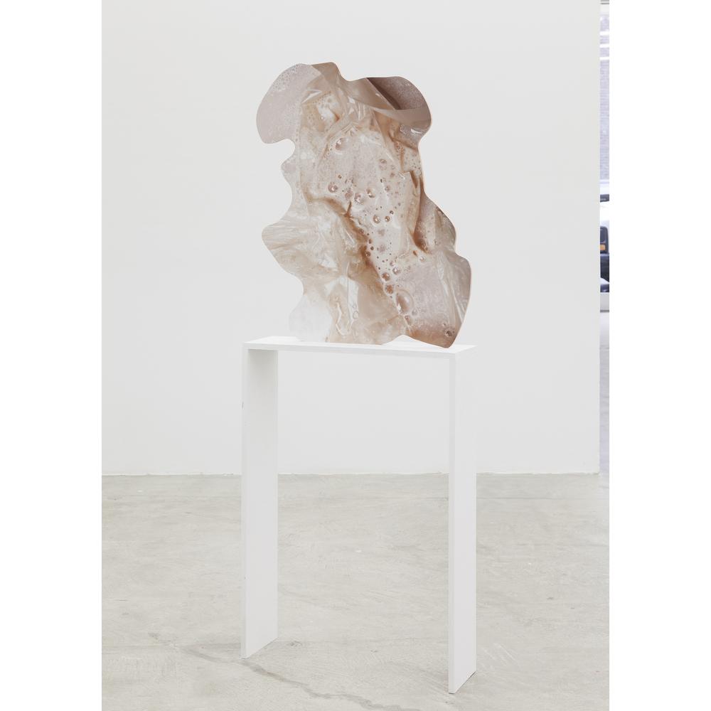 Rachel De Joode, Contiguity II , 2015,archival inkjet print on PVC,29 x 21 in