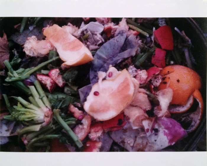 Ryan Foerster,  Giant Compost,  2011, C-print, 50 x 72 in, Edition 1 of 1 + I AP