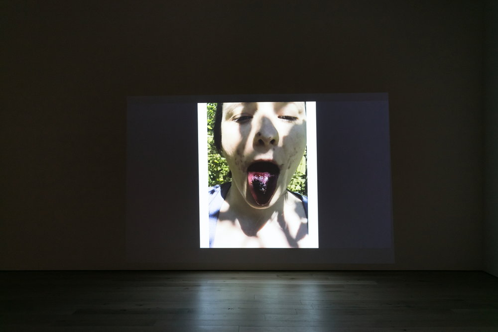 Installation view, Michel Auder,  TRUMPED,  2018, HD video, color, sound by Matthias Grübel, 8:55 min.