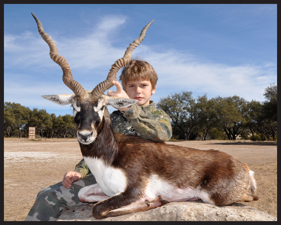 blackbuck5.jpg