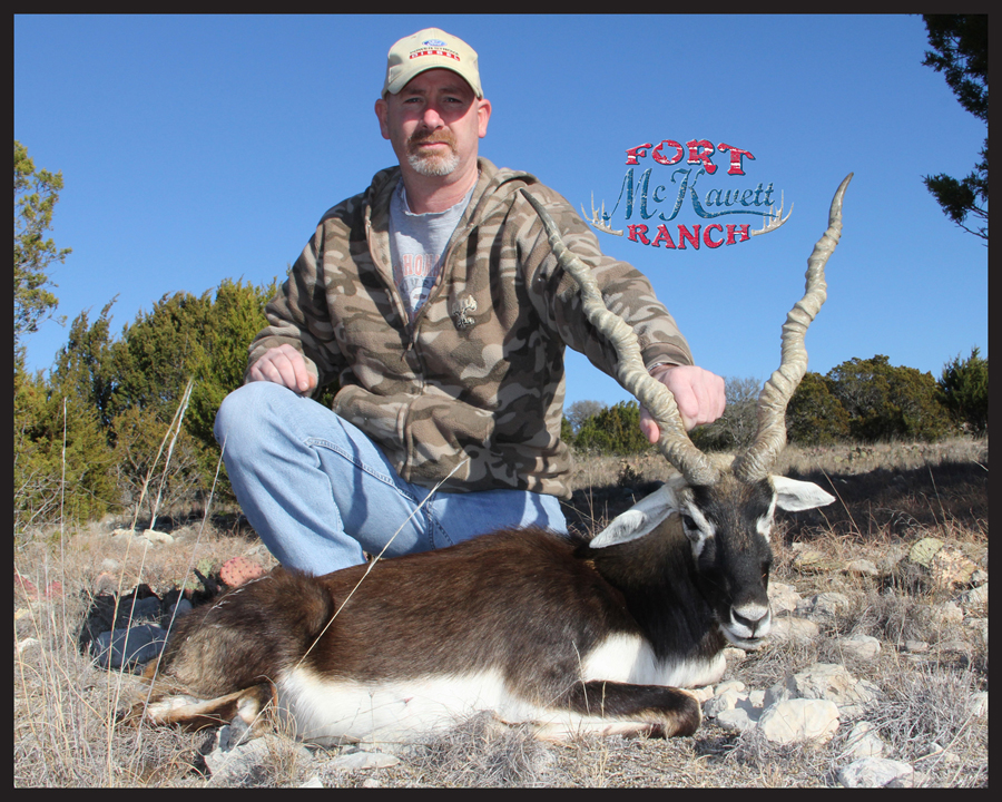 blackbuck8.jpg
