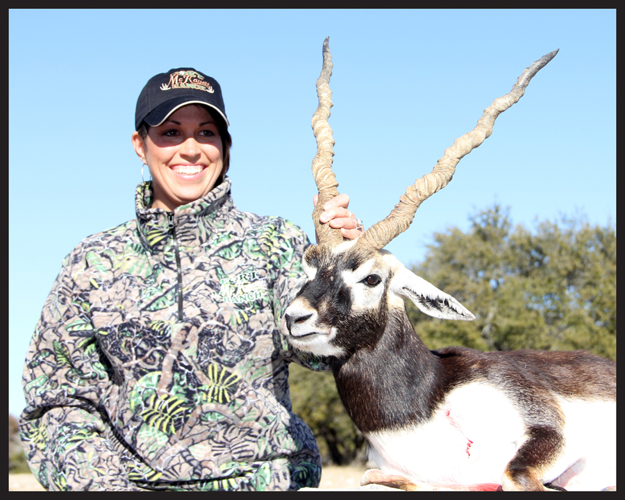 blackbuck21.jpg