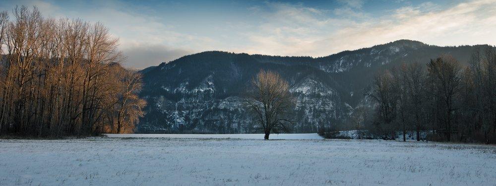 YEON : Winter