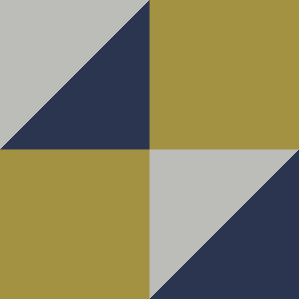 Color-Block-Yellow-and-navy for website.png