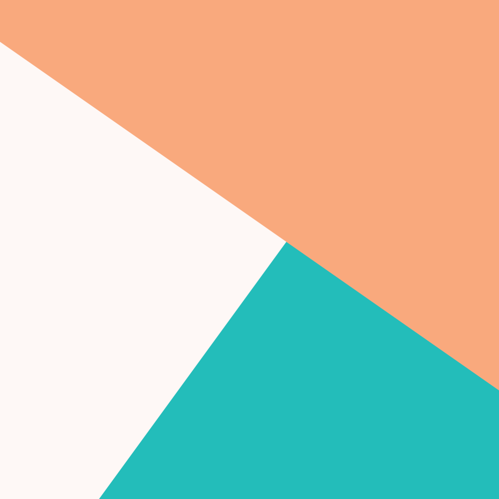 Miami-Vice-Color-Block for website.png