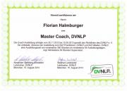 Florian Halmburger NLP Master Coach DVNLP_0.png