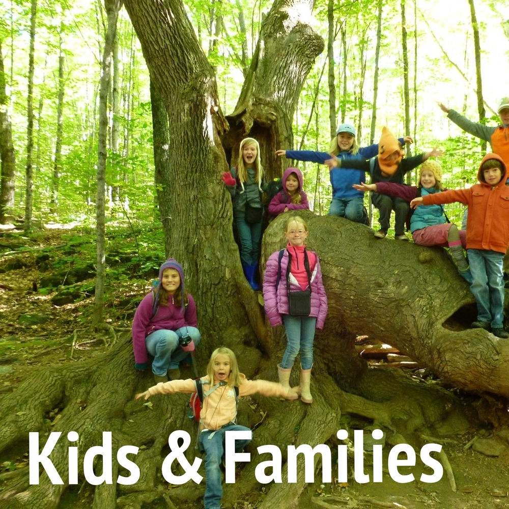 Nature-Museum-Programs-Kids-Families-Thumb