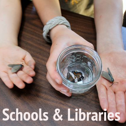 Nature-Museum-Programs-Schools-Libraries-Thumb