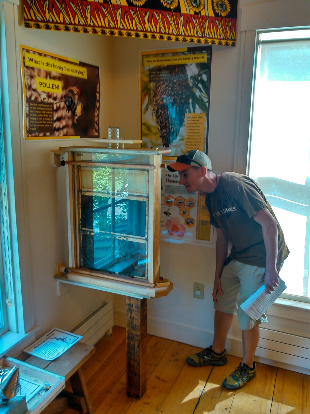 Environmental Educator Jake Pipp checks out the hive