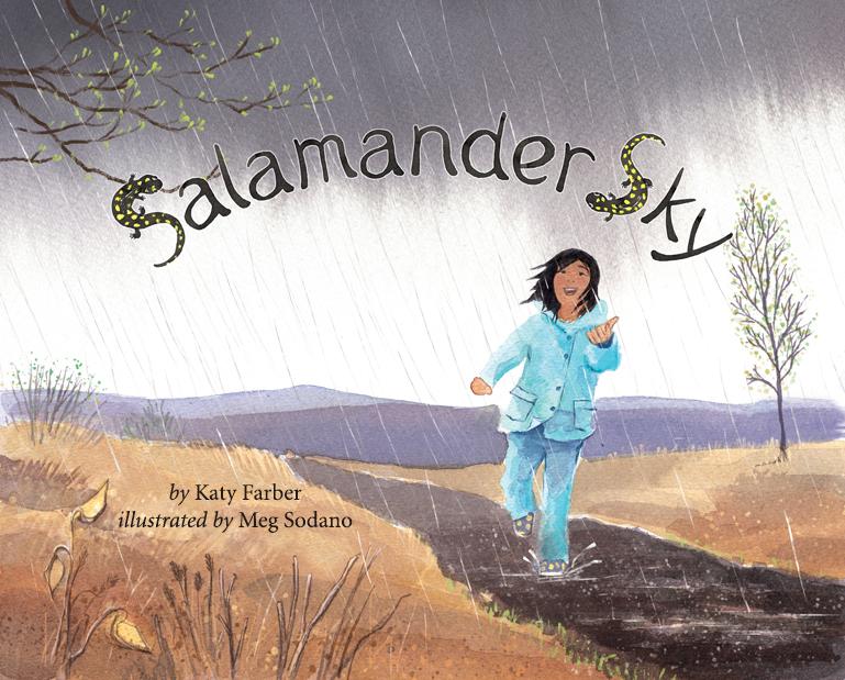 Salamander Sky Cover.jpg
