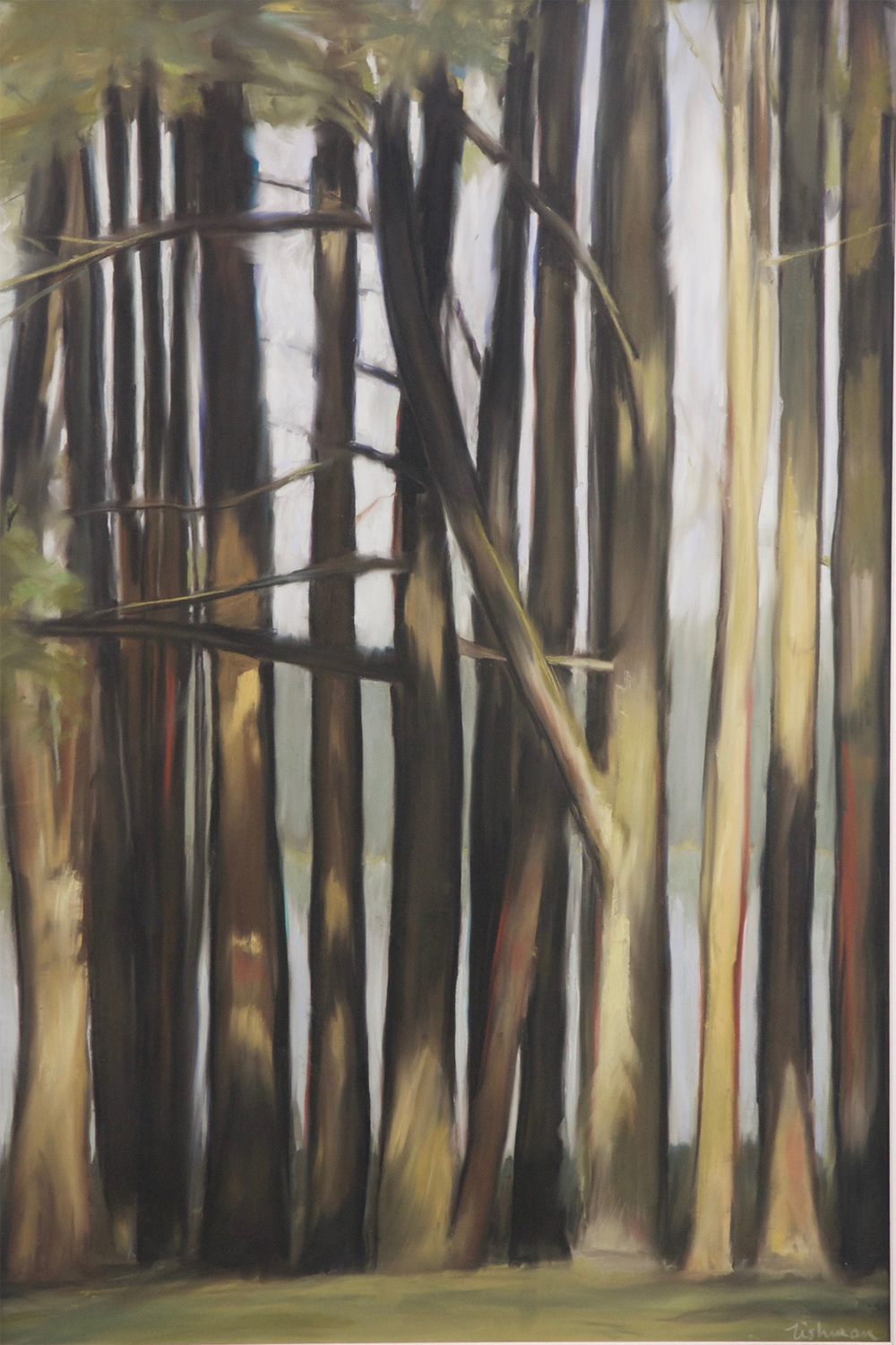 """<p><strong>ANDREA TISHMAN</strong>pastel, oil painting, printmaking<a href=""""/andrea-tishman"""">More →</a></p>"""