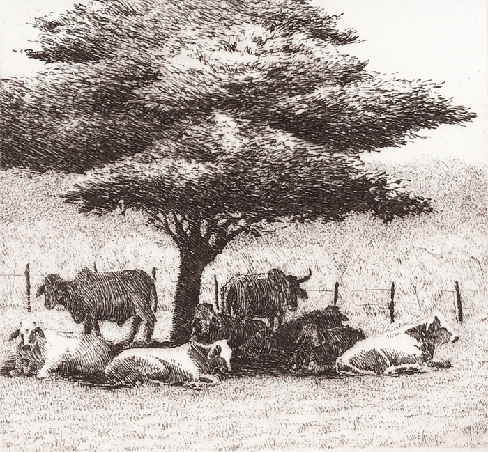"'African Cows', 11""x10"", $95 framed, $55 unframed"