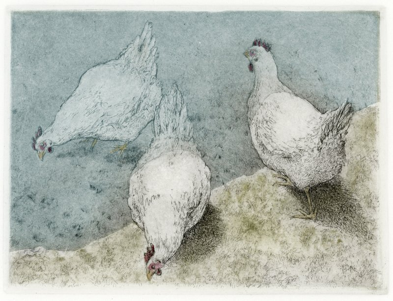 "'Blue Tarp Over White Chickens', 11""x11"", $130 framed, $85 unframed"