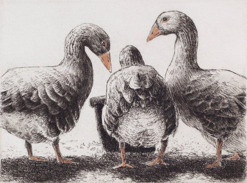 "'Three Geese, One Bucket"", 11""x10"", $130 framed, $70 unframed"