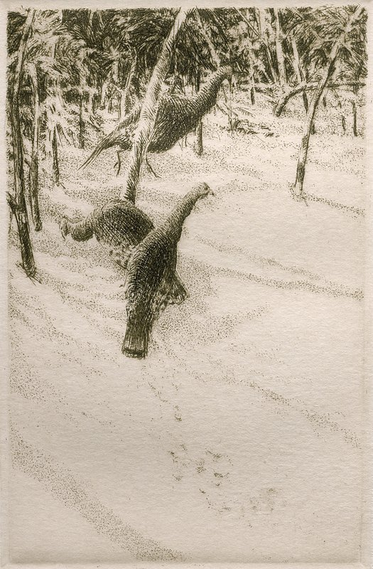 "'Turkeys in Winter', 11""x9"", $95 framed, $60 unframed NO LONGER AVAILABLE"