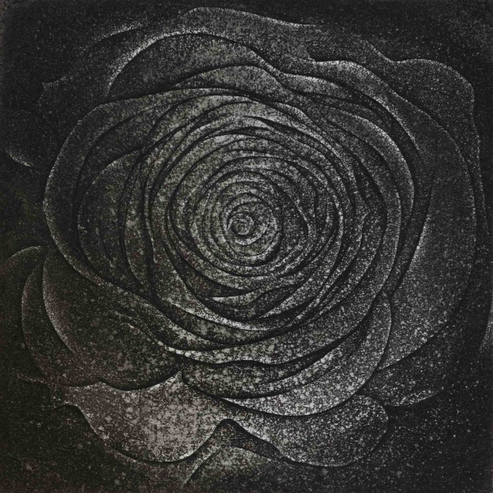 "Rose, etching, 5"" x 5"", $325"