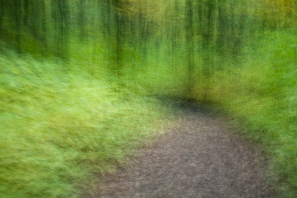 """The Path"", photography, price dependent on size etc"