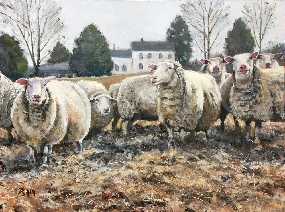 """Curious Flock"", oil on board, 12"" x 16"", $725 (framed)"