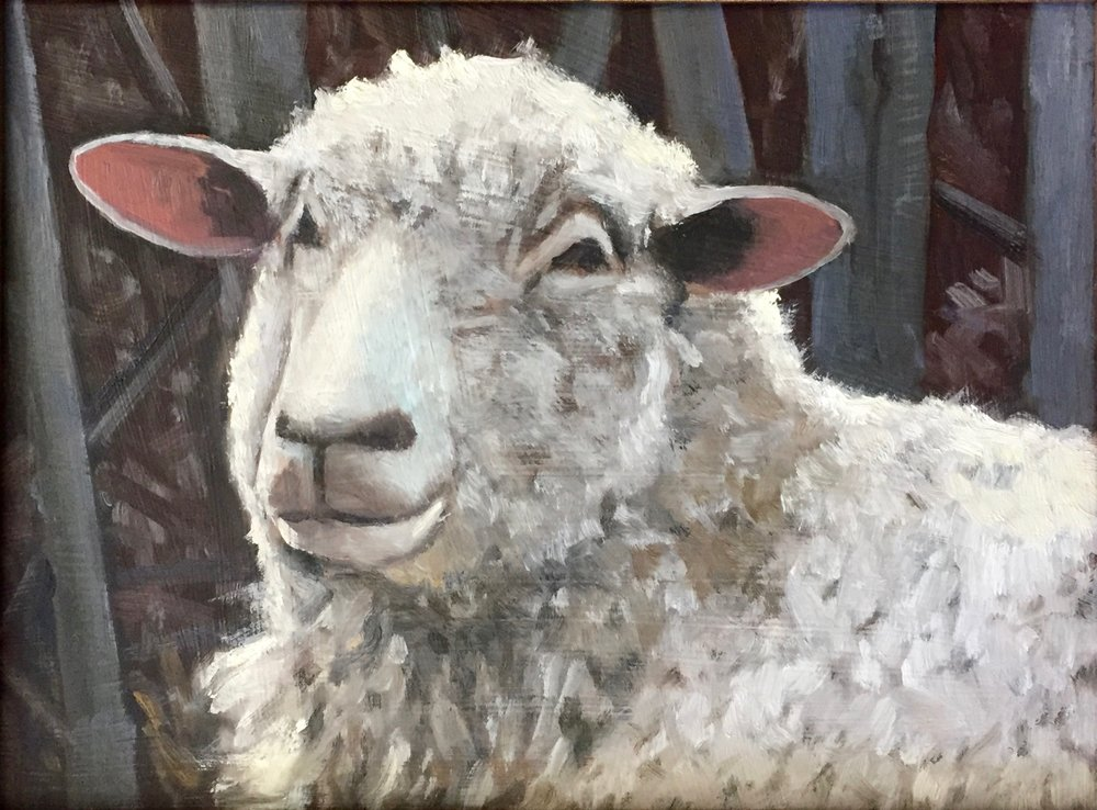 """Soft Stare"", oil on canvas, 9"" x 12"", $400 (framed)"
