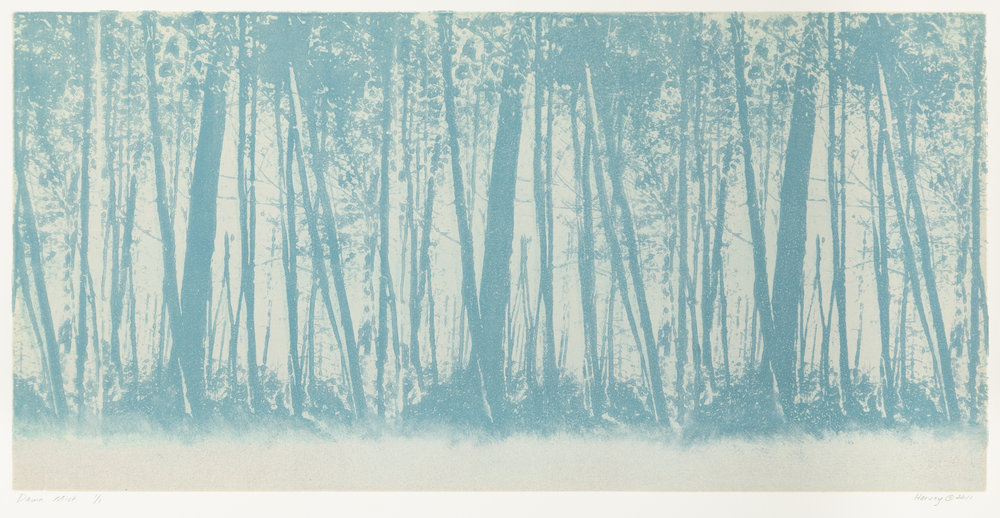 """Dawn Mist"", monoprint, 19.75"" x 31"", $500 (framed)"