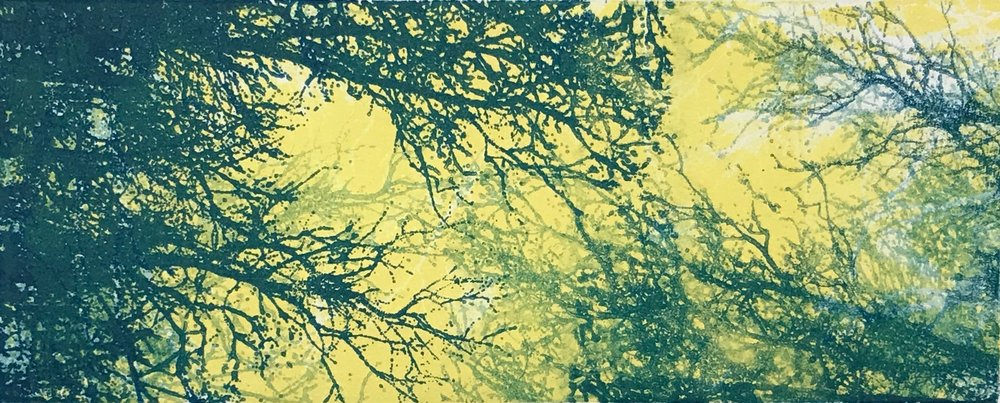 """Summer Sky"", monoprint, 12.75"" x 21"", $300 (framed)"