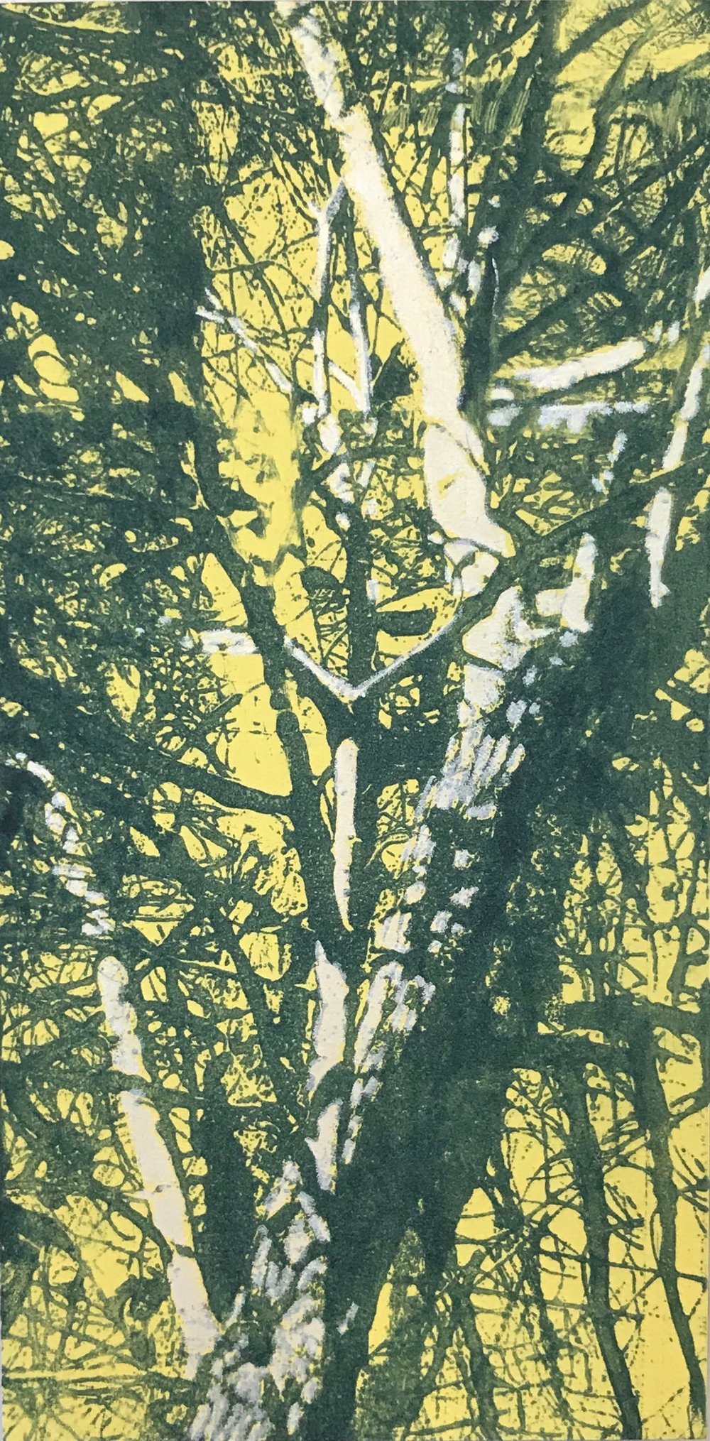 """Tree, Sunset"", monoprint on panel, 12"" x 6"", $150"