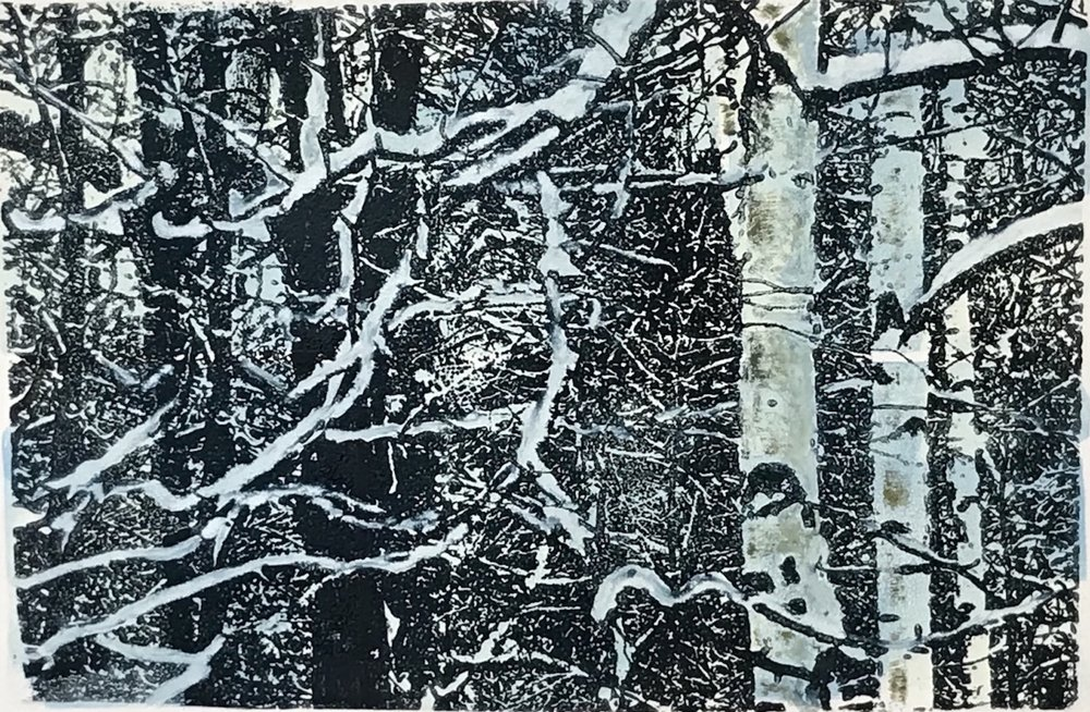 """Wintry Woods"", monoprint, 14.5"" x 18.5"", $300 (framed)"