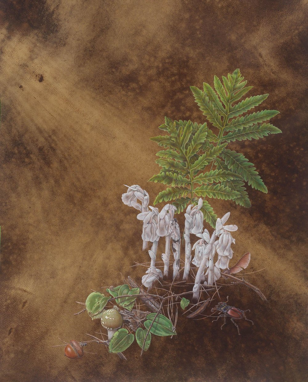 """""""Indian Pipes"""", watercolor on dyed goatskin, 16 3/4"""" x 11 3/4"""", (image size) $2,400 (framed)"""