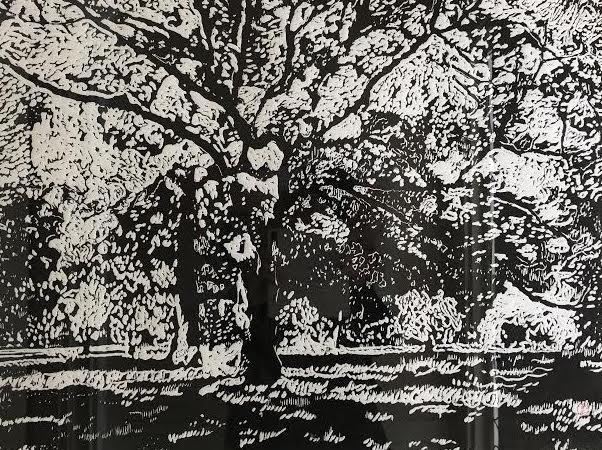 """""""The Fenway"""", woodcut"""
