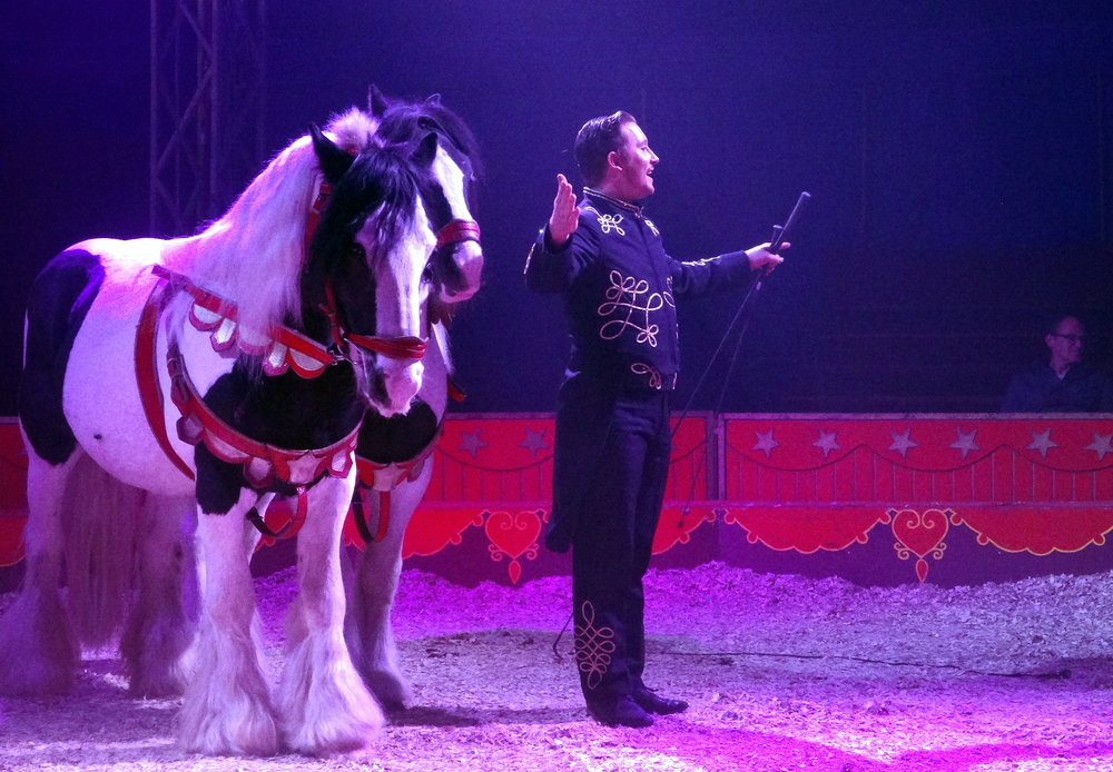 Circus Pipo 13.JPG