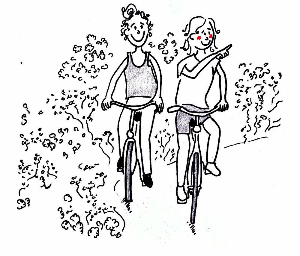 fietsen .jpg