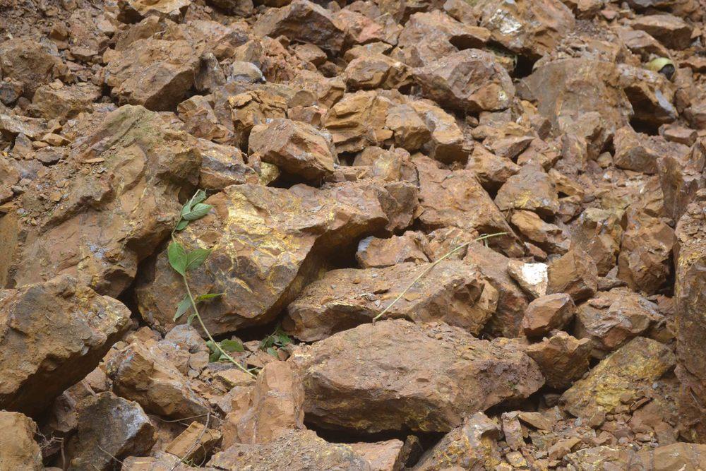 Piedras de Jabón/Belmont