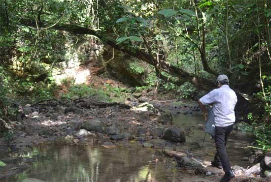 SHOP-PANAMÁ Nuestra Historia 1.jpg