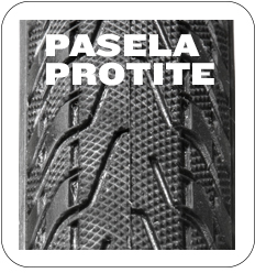Pasela Protite