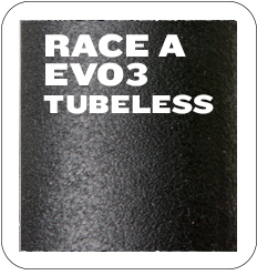 race a evo3 tubeless