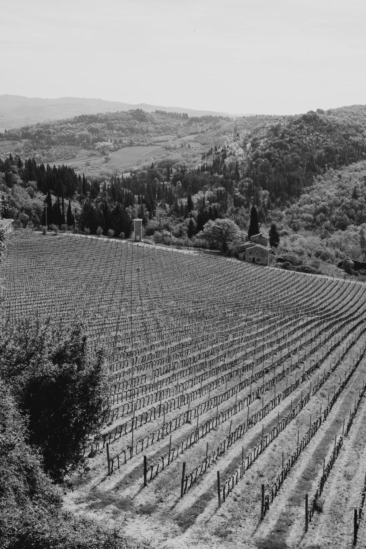 ITALIA-4584.jpg