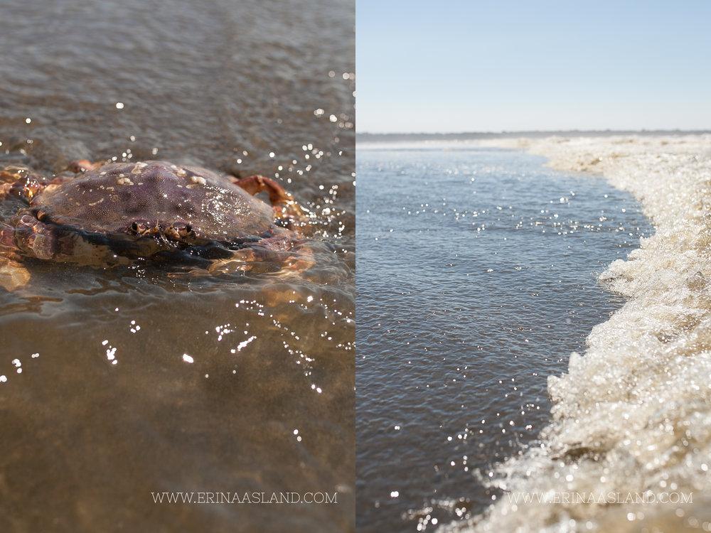 erinaasland blog waves 16.jpg