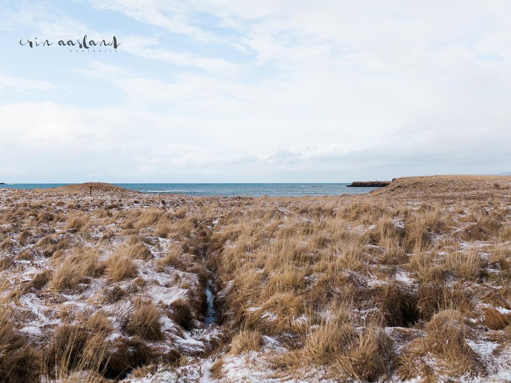 EAasland Iceland blog 30.jpg