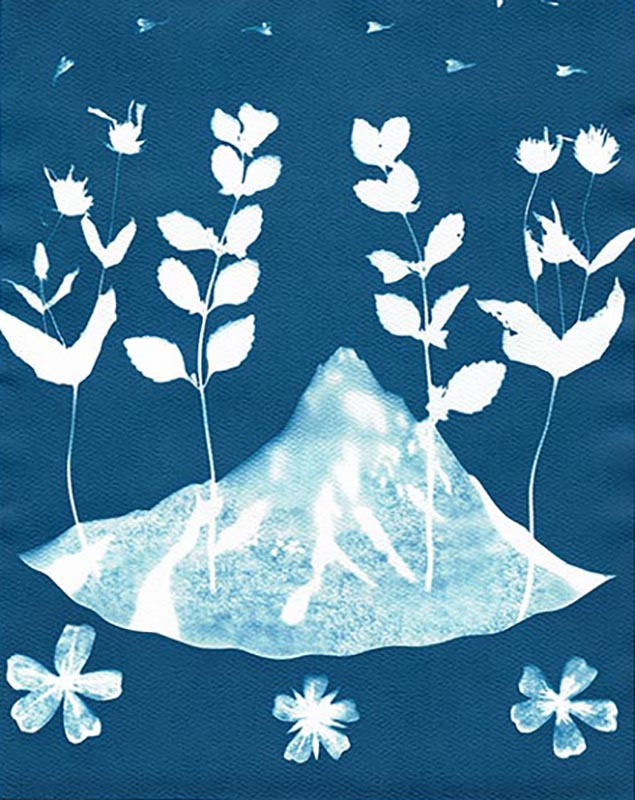 Little Mountain Cyanotype