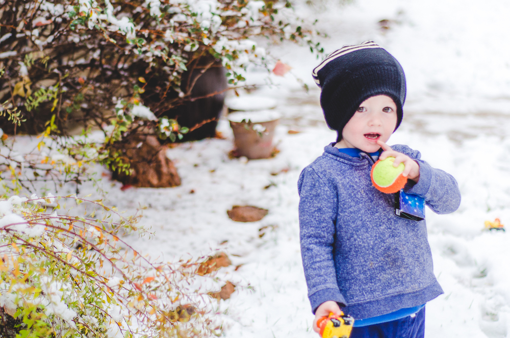 Nov 2015 Snow Day-BLOG-7213.jpg
