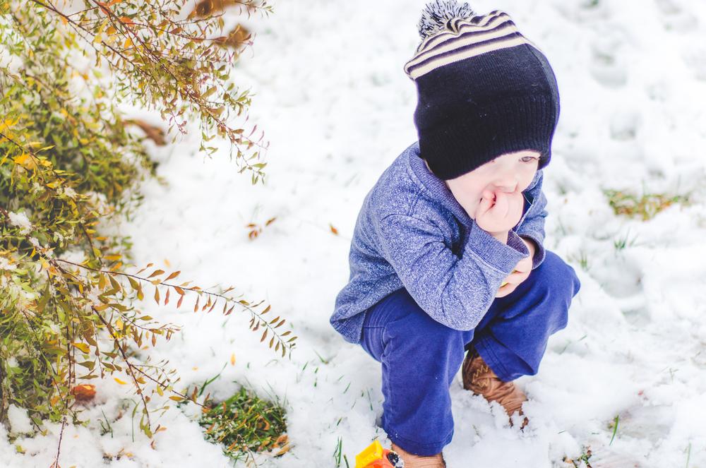 Nov 2015 Snow Day-BLOG-7217.jpg