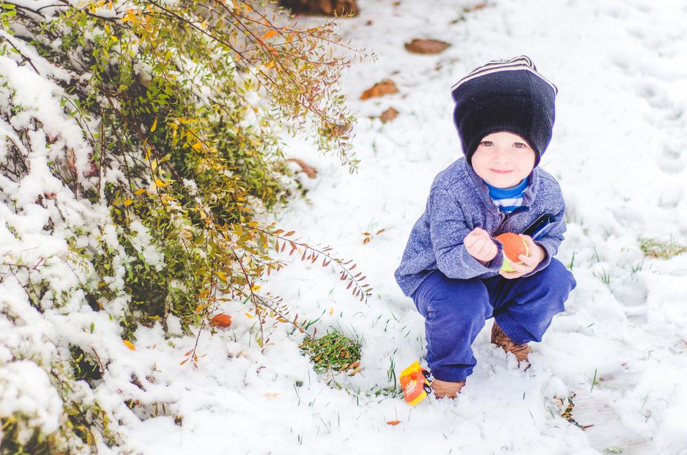 Nov 2015 Snow Day-BLOG-7220.jpg