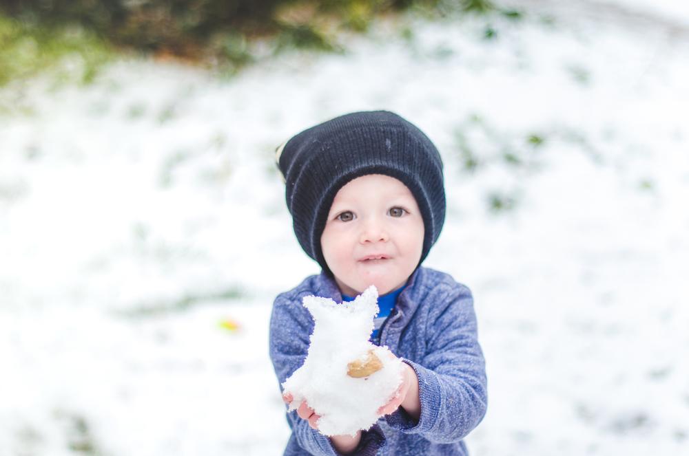 Nov 2015 Snow Day-BLOG-7247.jpg
